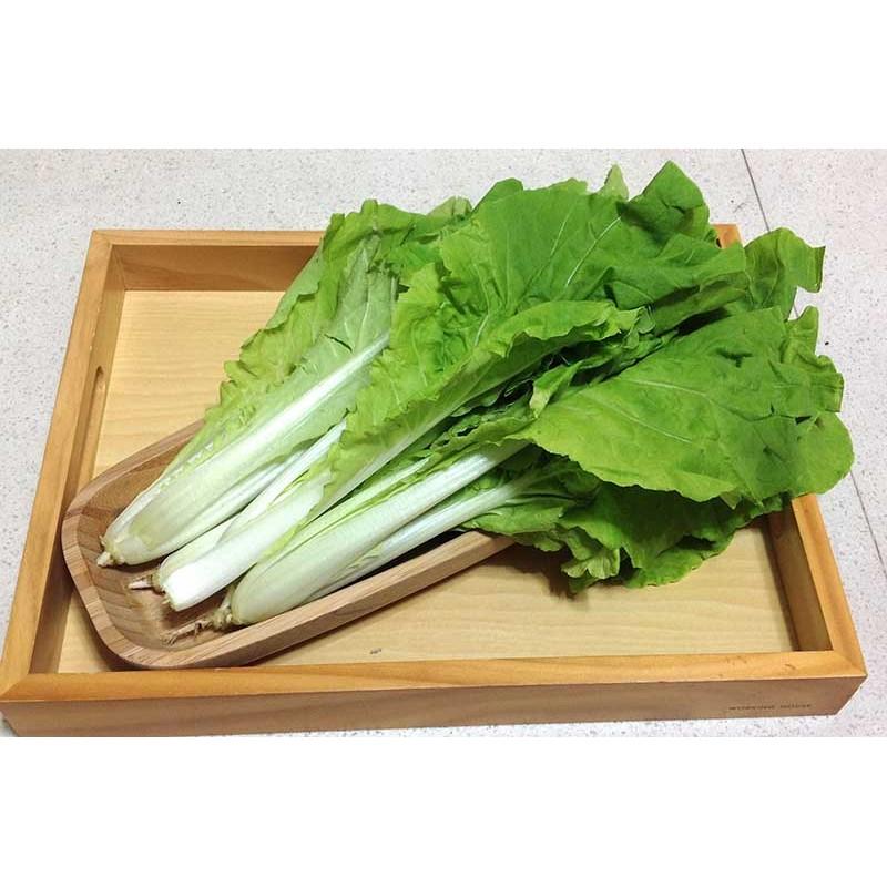 白梗白菜商品编号i057