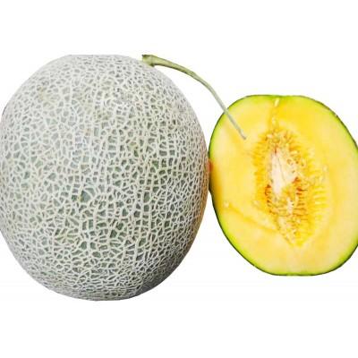 紅肉哈密瓜