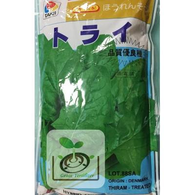 日本波菜種子/トライ品種