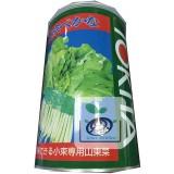 日本切葉白菜1磅 -東京べかな