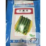明豐-小黃瓜
