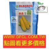 金品黃金水果玉米種子