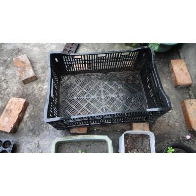 家庭及溫室種植箱