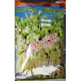蕎麥芽菜種子/1L