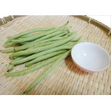 四季豆/敏豆