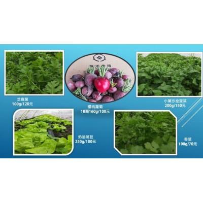 快活農場  芝麻葉和沙拉菠菜的生菜