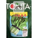 日本鳳京白菜
