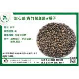 空心菜(青竹葉應菜)種子