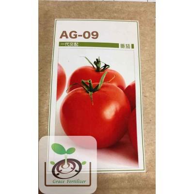 全紅番茄 AG09