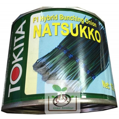 日本細香蔥