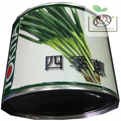 日本四季蔥-ちゃんこ葱