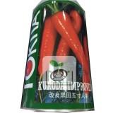 日本紅蘿蔔種子(改良黑田五寸人參)種子