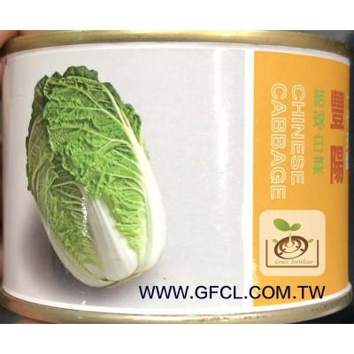 豐陽大白菜(結球白菜)/種子
