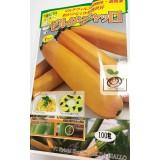 日本黃色長型櫛瓜