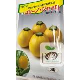 日本圓形黃色櫛瓜