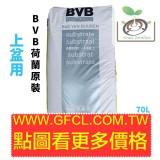 BVB培養土6D(上盆用)/70L